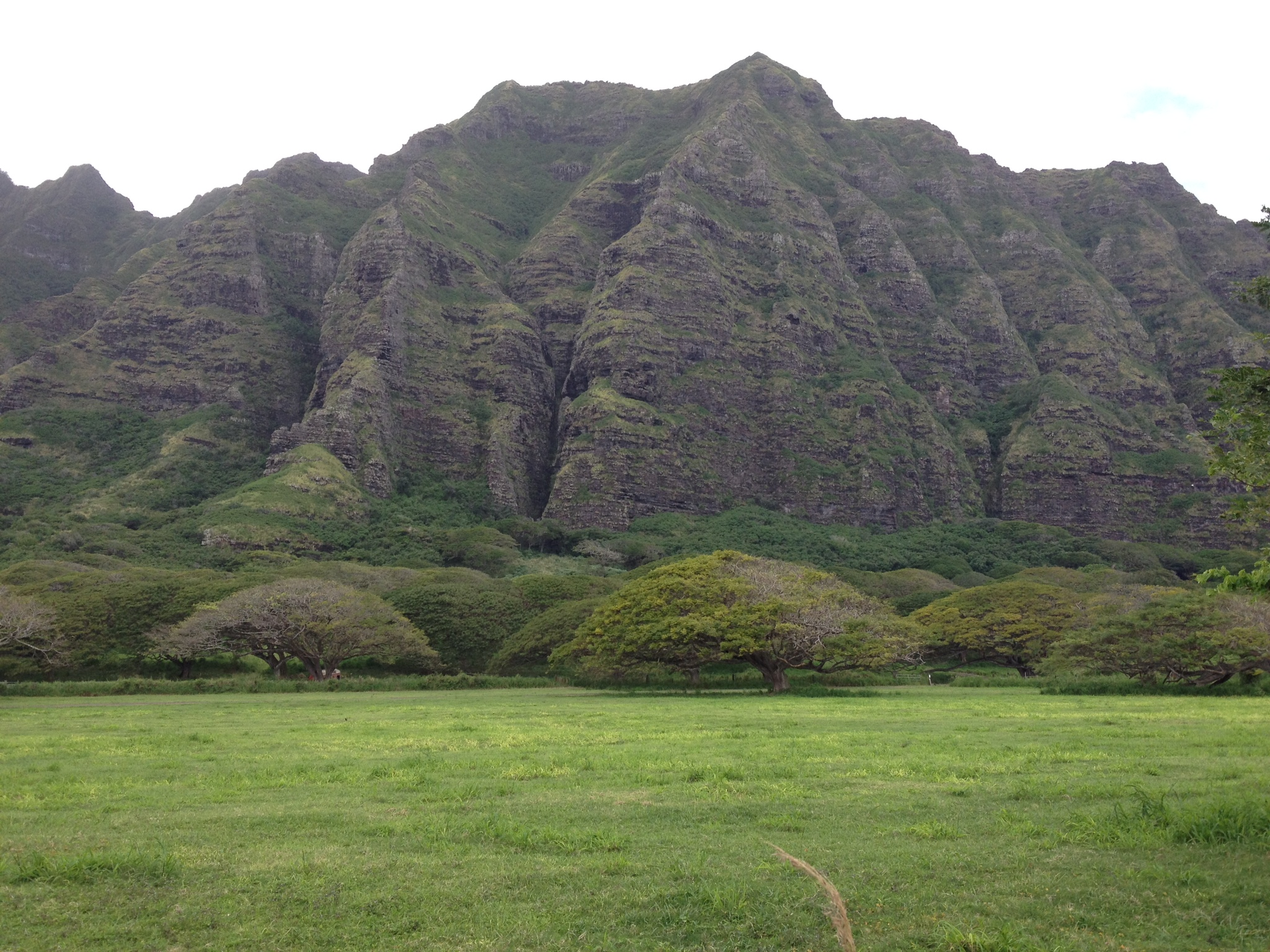 Around Oahu 3